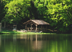 Беседка удобно расположилась у самого берега, в тени леса.