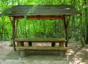 Небольшая открытая беседка гарантирует ощущение пребывания в лесу.